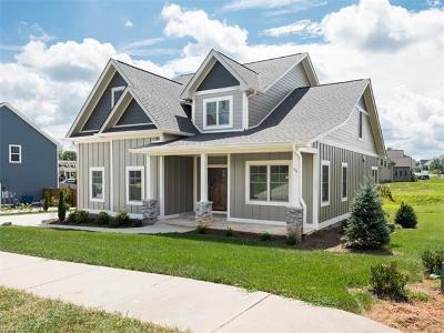Mills River Single Family Home For Sale: 94 Rockbridge Road