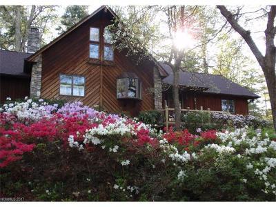 Asheville Single Family Home For Sale: 68 Acorn Road