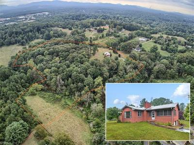 Asheville Single Family Home For Sale: 60 Green Valley Road