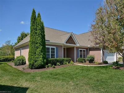 Asheville Single Family Home For Sale: 28 Slosman Drive