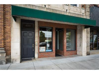 Hendersonville Condo/Townhouse For Sale: 411 N Main Street #409