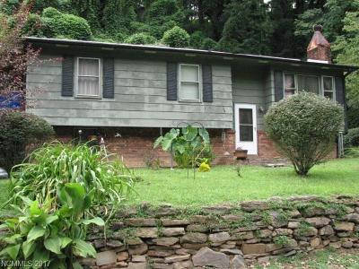 Tryon Single Family Home For Sale: 395 E Howard Street