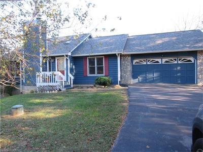 Weaverville Single Family Home For Sale: 2 Snapfinger Drive #1