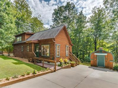Saluda Single Family Home For Sale: 65 N Lakeview Drive