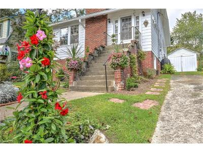 Asheville Single Family Home For Sale: 160 Laurel Loop