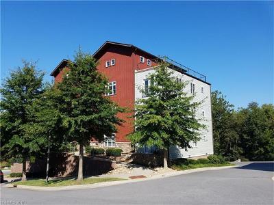 Asheville Condo/Townhouse For Sale: 400 Skyloft Drive #303