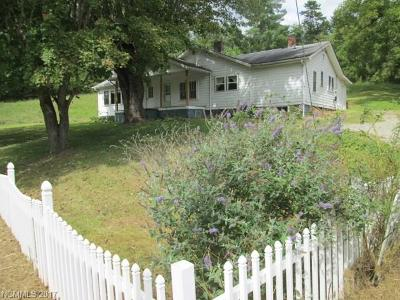 Weaverville Single Family Home For Sale: 200 Stockton Branch Road