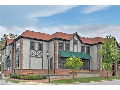 Asheville Condo/Townhouse For Sale: 18 Brook Street #208