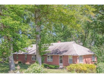 Asheville Single Family Home For Sale: 133 Cedar Hill Road