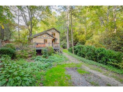 Black Mountain Single Family Home For Sale: 11 Moxie Trail