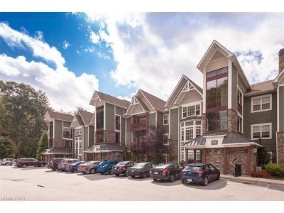 Asheville Condo/Townhouse For Sale: 1000 Olde Eastwood Village Boulevard #2B
