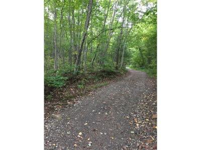 Residential Lots & Land For Sale: 0000 High Top Mountain Road