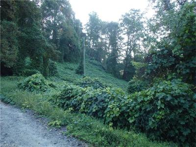 Bat Cave, Gerton Residential Lots & Land For Sale: 0000 Bat Cave Drive