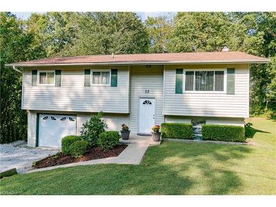 Hendersonville Single Family Home For Sale: 12 Springside Drive