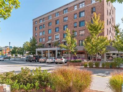 Hendersonville Condo/Townhouse For Sale: 538 N Main Street #422