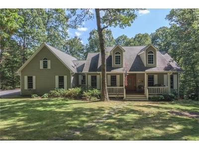 Saluda Single Family Home For Sale: 247 Big Raven Lane