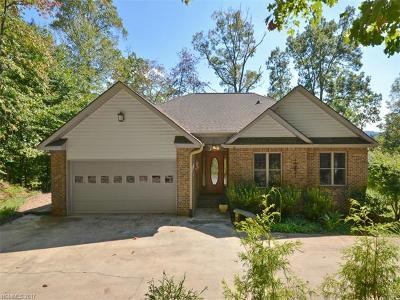 Asheville Single Family Home For Sale: 15 Bees Mountain Road