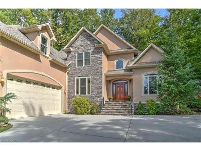 Weaverville Single Family Home For Sale: 107 Twin Courts Drive