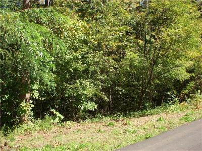 Asheville Residential Lots & Land For Sale: 10 Angler Trail #20