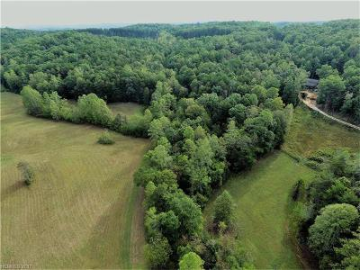 Mill Spring Residential Lots & Land For Sale: 1270 Rock Springs Road