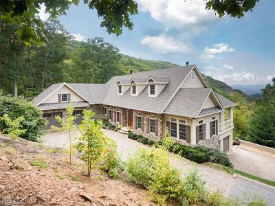Asheville Single Family Home For Sale: 145 Big Spring Drive