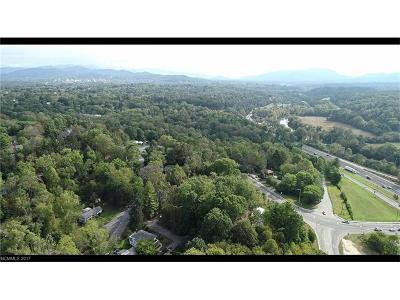 Asheville NC Commercial For Sale: $2,900,000