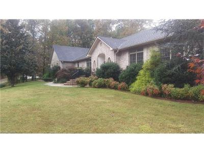 Mills River Single Family Home For Sale: 20 Burning Tree Drive