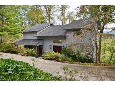 Asheville Single Family Home For Sale: 370 E Sondley Drive