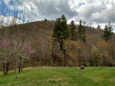Asheville Residential Lots & Land For Sale: 245 Merrills Cove Road