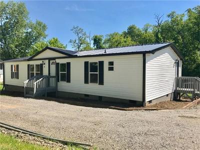 Asheville Single Family Home For Sale: 70 Bingham Road