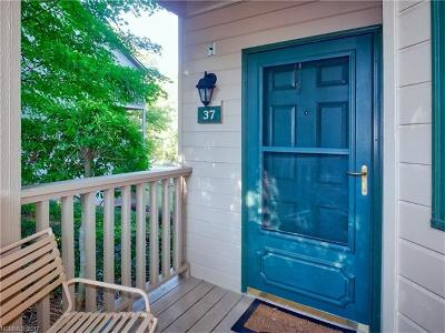 Condo/Townhouse Under Contract-Show: 160 Whitney Boulevard #37