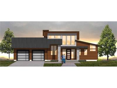 Asheville Single Family Home For Sale: 18 Chelsea Knoll