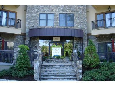 Hendersonville Condo/Townhouse For Sale: 350 E Allen Street #307