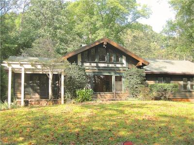Tryon Single Family Home For Sale: 88 Ivy Hills Lane
