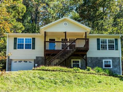Weaverville Single Family Home For Sale: 26 Lucky Gap Lane