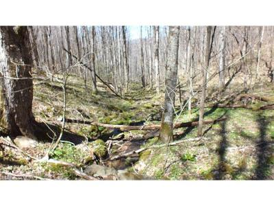 Hot Springs NC Residential Lots & Land For Sale: $95,000