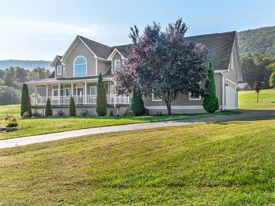 Hendersonville Single Family Home For Sale: 203 Saddle Club Lane