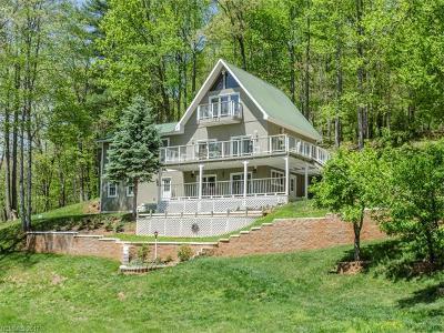 Weaverville Single Family Home For Sale: 35 McKinney Road