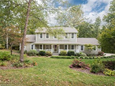 Asheville Single Family Home For Sale: 31 Fiver Lane