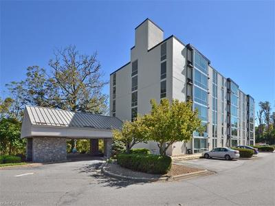 Asheville Condo/Townhouse For Sale: 647 Town Mountain Road #401 & 40