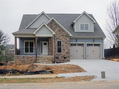 Mills River Single Family Home For Sale: 308 Rockbridge Road
