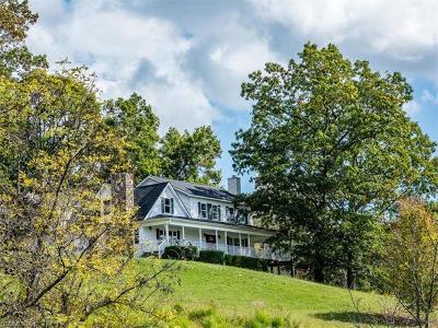 Weaverville Single Family Home For Sale: 24 Ivy Fields Lane