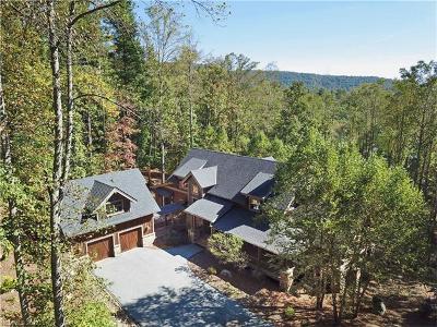 Asheville Single Family Home For Sale: 466 Barrington Drive