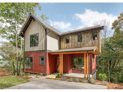 Asheville Single Family Home For Sale: 46 Hibriten Drive