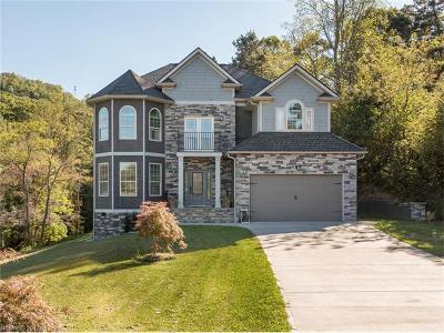 Asheville Single Family Home For Sale: 16 Magnolia Hill Court