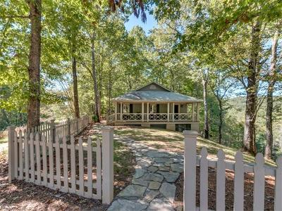 Saluda Single Family Home For Sale: 172 Moonshine Trace