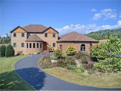 Hendersonville Single Family Home For Sale: 471 Byers Cove Road