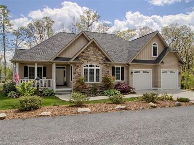 Hendersonville Single Family Home For Sale: 333 Millbrae Loop