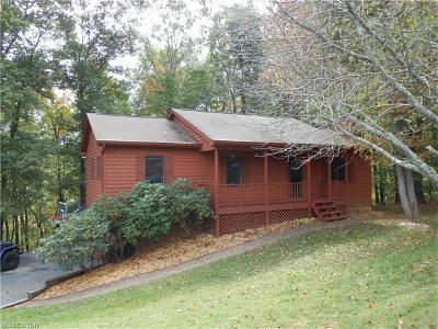 Asheville Single Family Home For Sale: 50 Brown Road