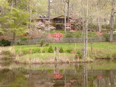 Asheville Single Family Home For Sale: 2349 Riceville Road